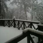 雪20100228
