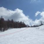 白樺高原国際スキー場 ホワイトホースコース コブ