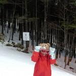 モミの木樹氷コース うさぎの看板
