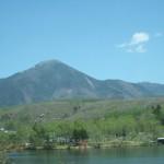 白樺湖 新緑