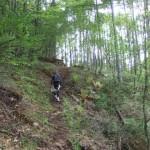 霧ヶ峰・美ヶ原 中央分水嶺トレイル Aコース