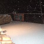 2012年 初雪
