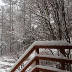 4月の積雪