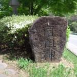 笠取峠 松並木