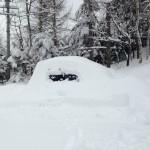 雪で埋もれた車