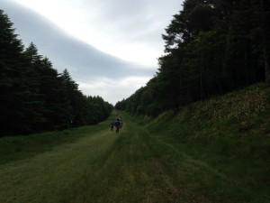 美ヶ原トレイルラン&ウォーク2016 ブランシュたかやま モミの木樹氷コース