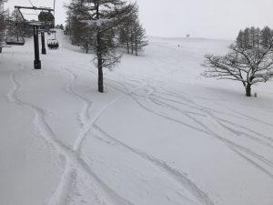 エコーバレー 新雪