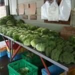 鷹山ファミリー牧場の野菜