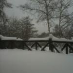 ウッドデッキ積雪