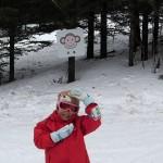 モミの木樹氷コース さるの看板