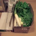 アチラノアカボシお泊りライブ 野菜の差し入れ