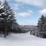 ブランシュたかやま モミの木樹氷コース