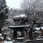 中山道 和田宿 信定寺
