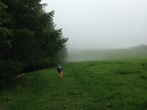 美ヶ原トレイルラン 草刈り