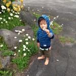ビーナスマラソンin白樺高原 お花摘み