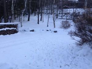 30cm近くの積雪