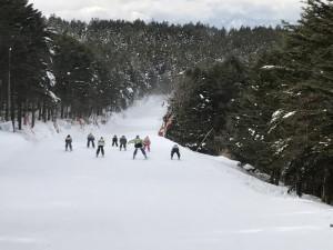 モミの木樹氷コース 競争