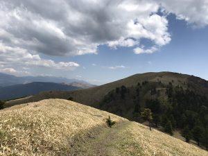 扉峠から三峰山へ