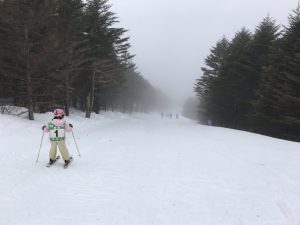 ブランシュたかやま スキージュニア検定