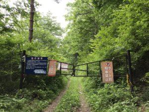 長門牧場への林道
