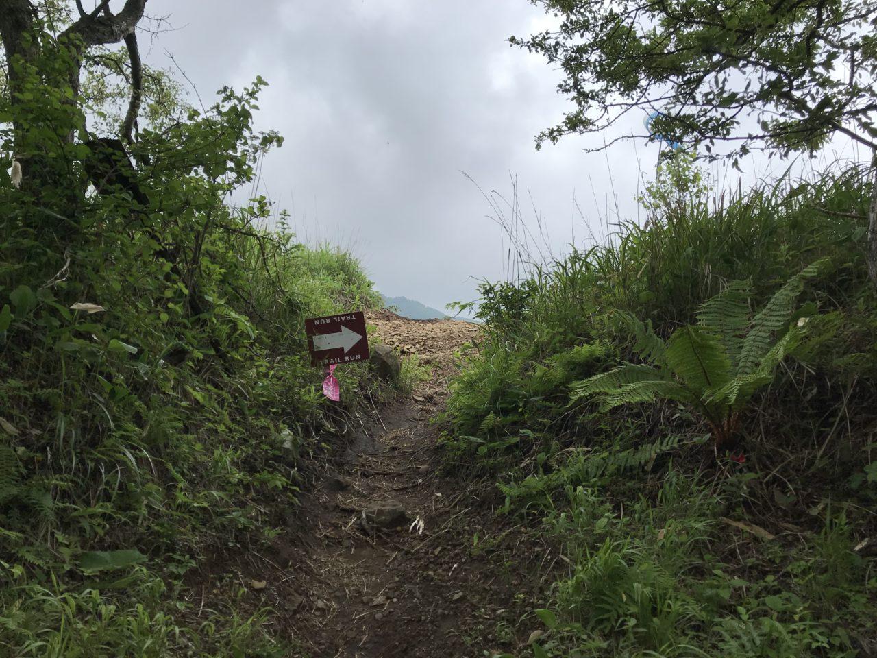 美ヶ原トレイルラン コースマーキング