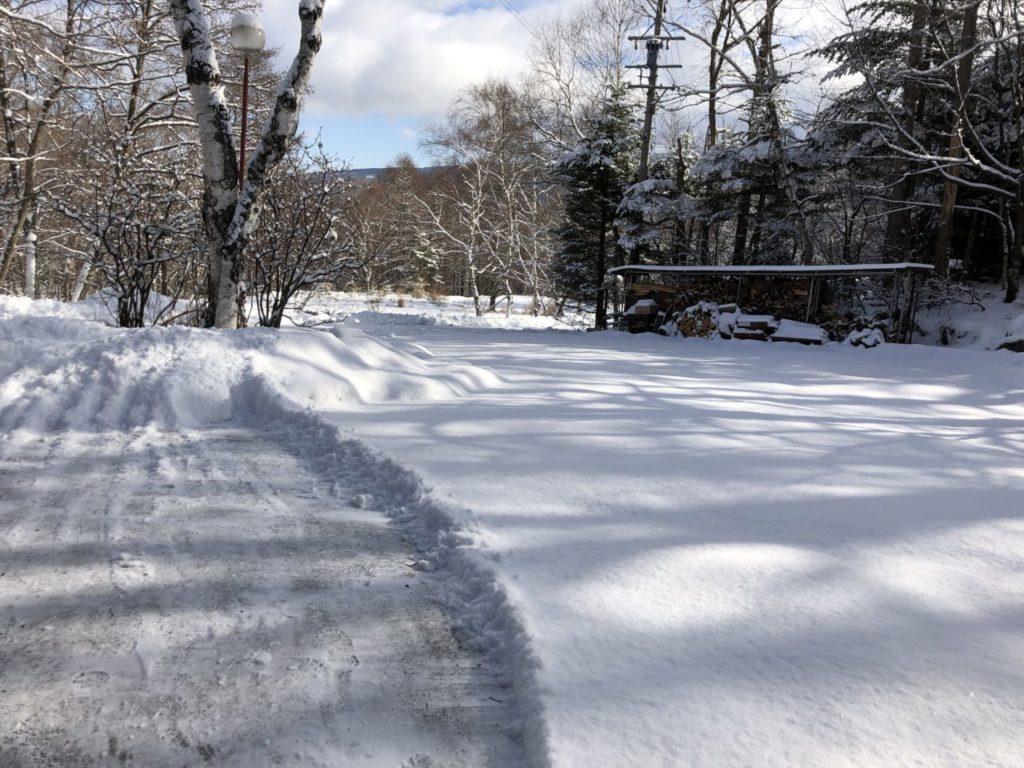 10cm積雪