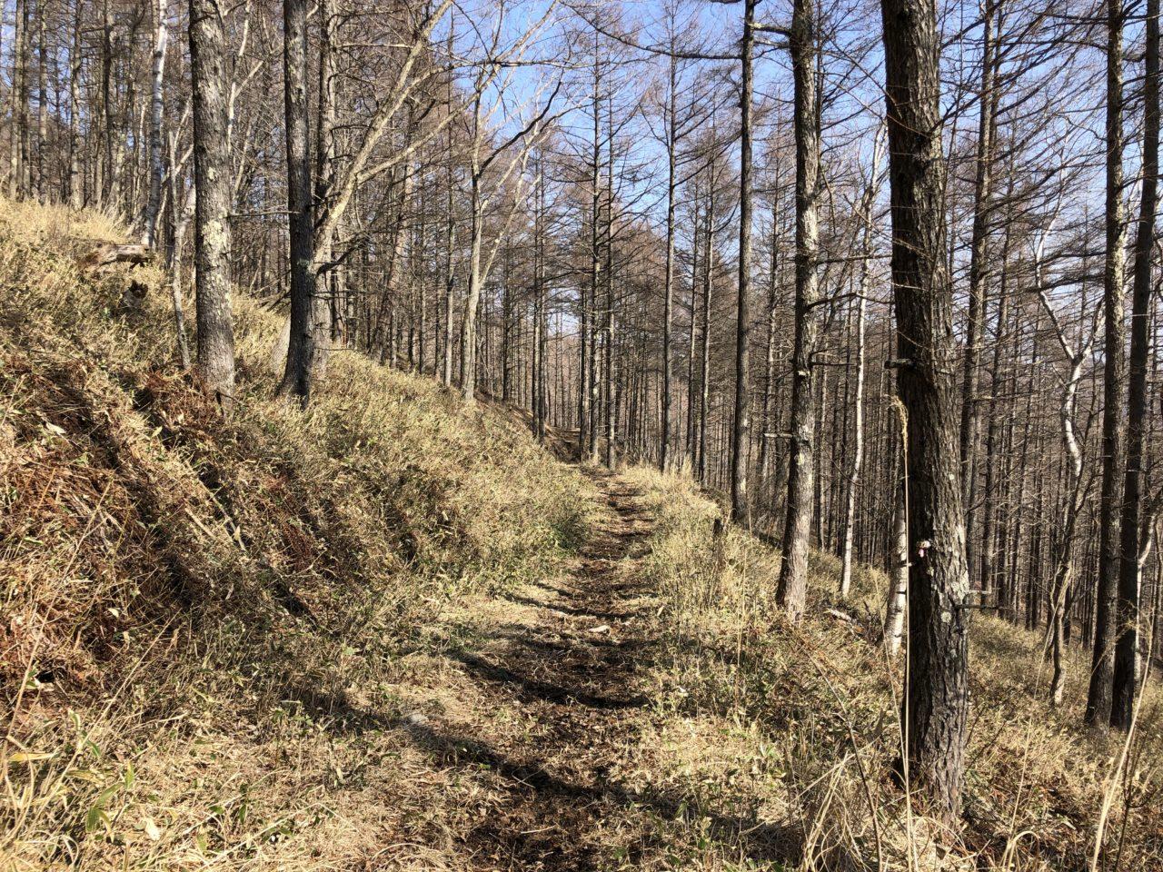 美ヶ原トレイルランコース エコーバレーへ