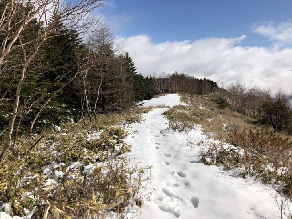 ブランシュたかやま山頂 姫木平ハイキングコース 残雪